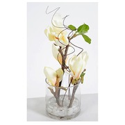 Indoor plant branches of white magnolia + round vase
