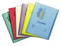 Translucent document protector 40 sleeves