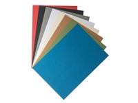 Pack von 100 Dokumentenhüllen aus Wellpappe 270 g Clairefontaine - farbig sortiert